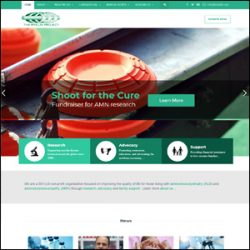 Non-Profit Website Design