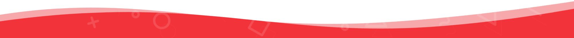 Red Seperator Line - Web Development Company - eCommerce Web Designer - Web Design Firm