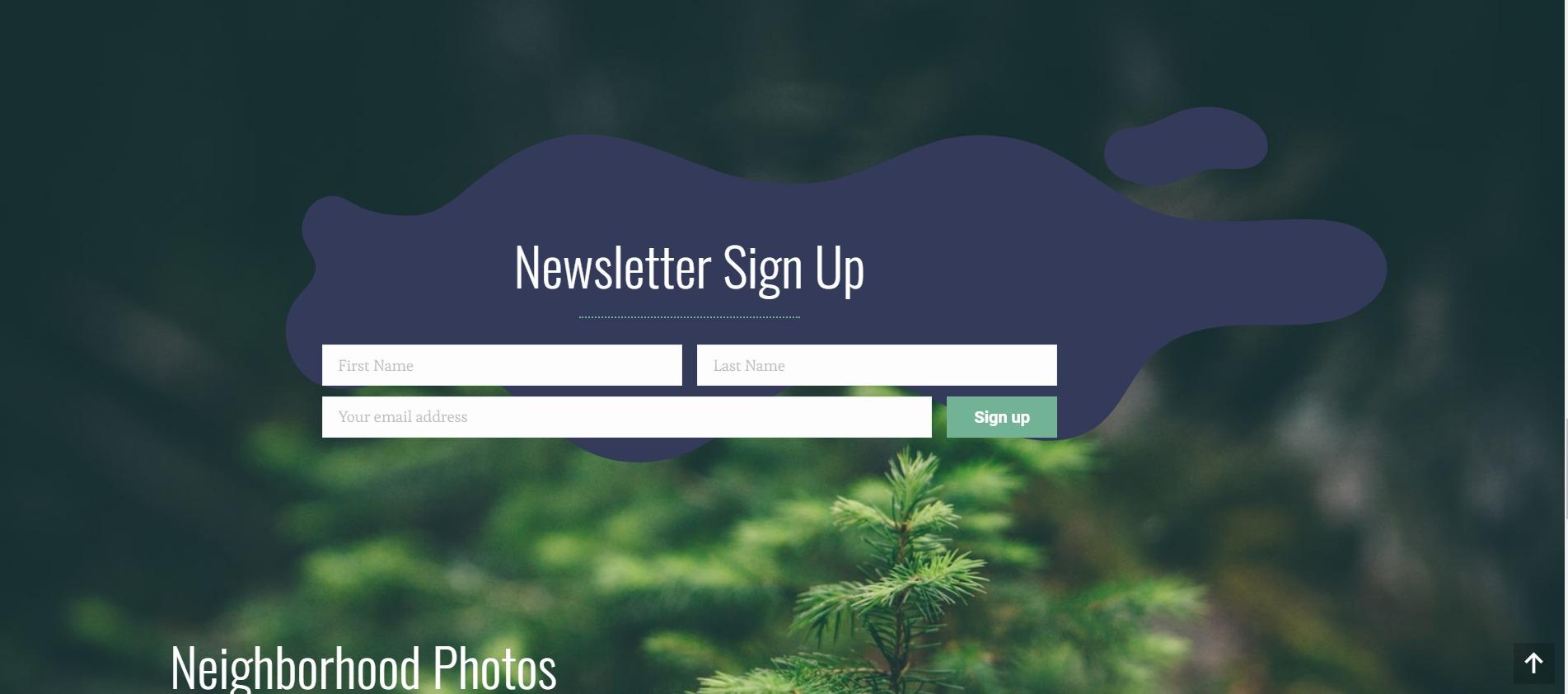 Custom SVG - WordPress Website - Web Design - Norfolk Web Development