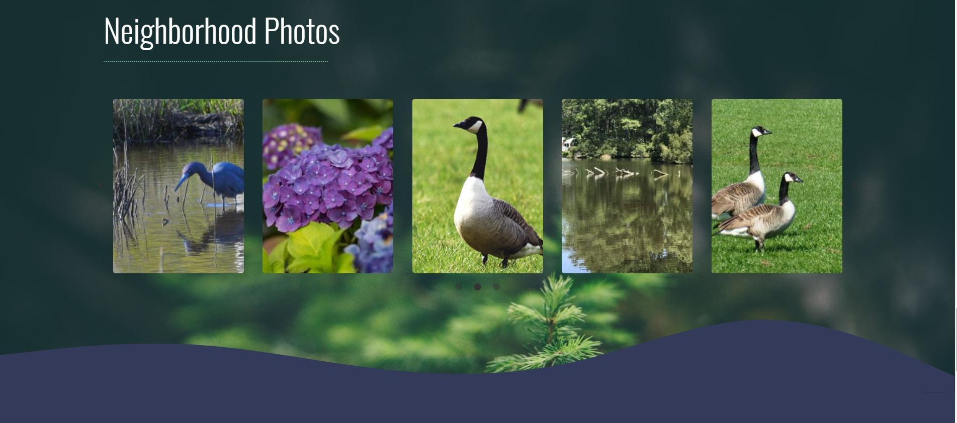 Neighborhood Photos - WordPress Website - Web Development - Web Design