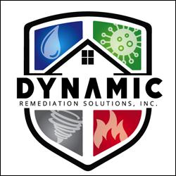 Dynamic Remediation - WordPress Website - Norfolk Web Design - Web Development